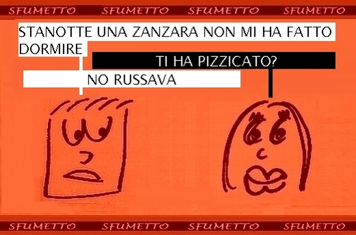 non ho dormito in camera c'era una zanzara