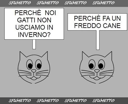 Barzellette Per Bambini Di 8 Anni Su Cani E Gatti Barzellette
